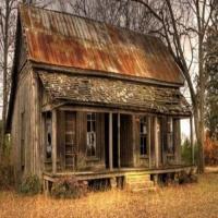North American Small Farm, Sustainability & Homestead Living