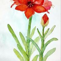 Pamela Hunt FINE ART