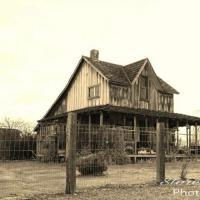 Wood House Eagle Point