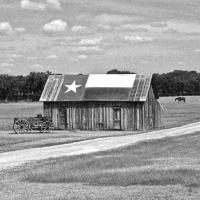 Texas Homeschool Support