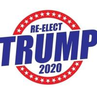Trump 2020 and beyond