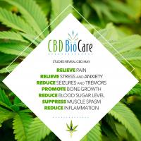CBD BioCare / CBD BioSkinCare / CBD BioPetCare