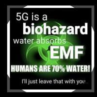 #Dangerous 5G Archive & Discussion