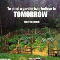 Gardening, Home Projects & Homemade Food