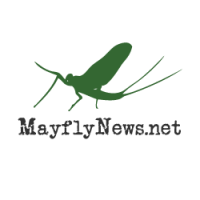 Mayflies of Lake Erie - Official Site