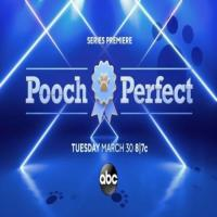 Pooch Perfect On ABC Network