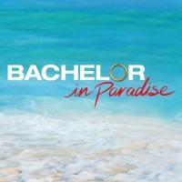 Bachelor in Paradise On ABC Network