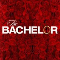 The Bachelor On ABC Network