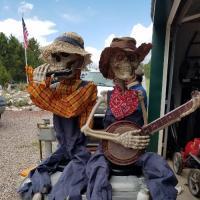 Fun in Custer Highlands