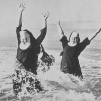 SistersFolly