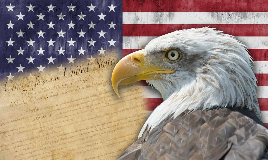 012601715-american-flag-and-bald-eagle