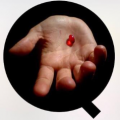 Operation Q