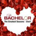 The Bachelor The Greatest Seasons - Ever On ABC Network